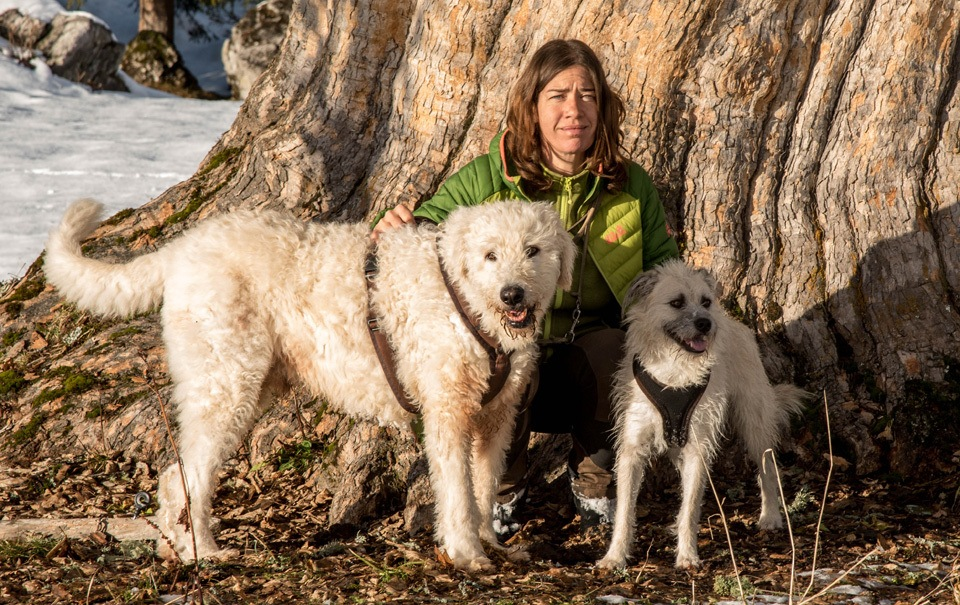 persönlich-bergahorn-hunde-ich